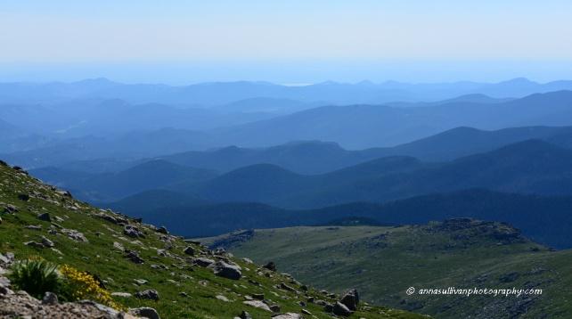 CO Mt Evans_6969