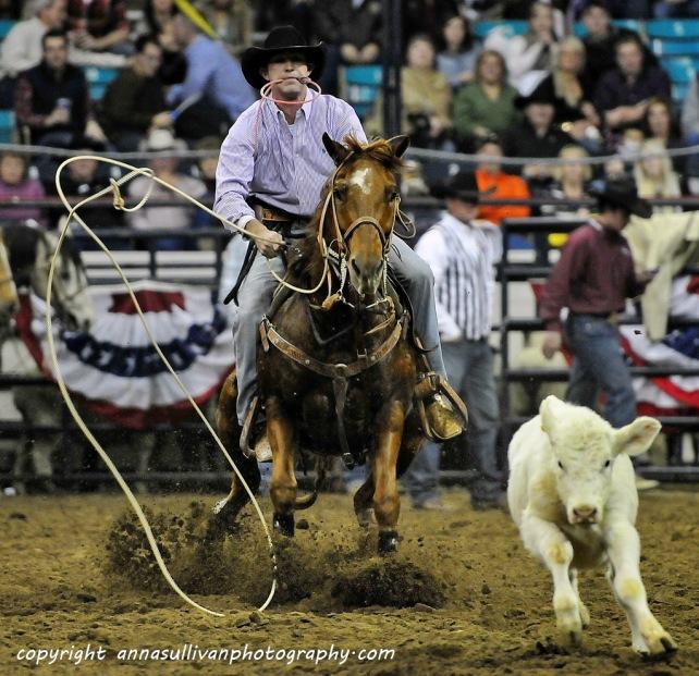 Rodeo_DSC0118