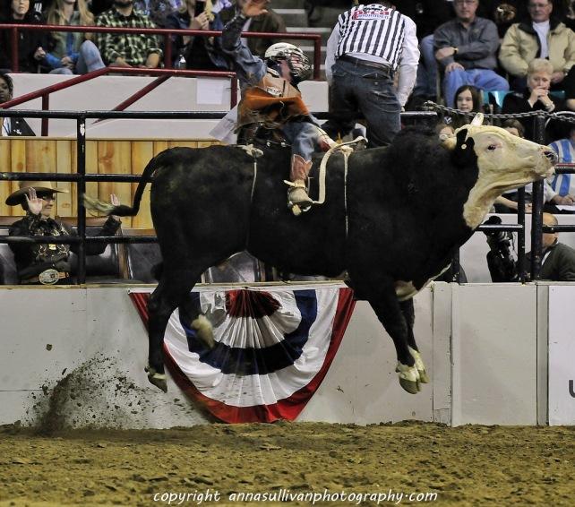 Rodeo_DSC0552