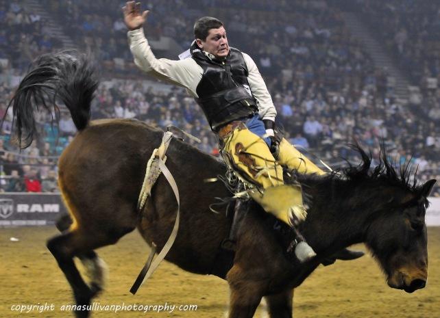 Rodeo_DSC9376