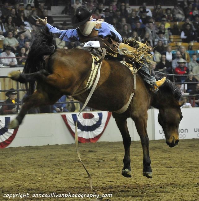 Rodeo_DSC9394