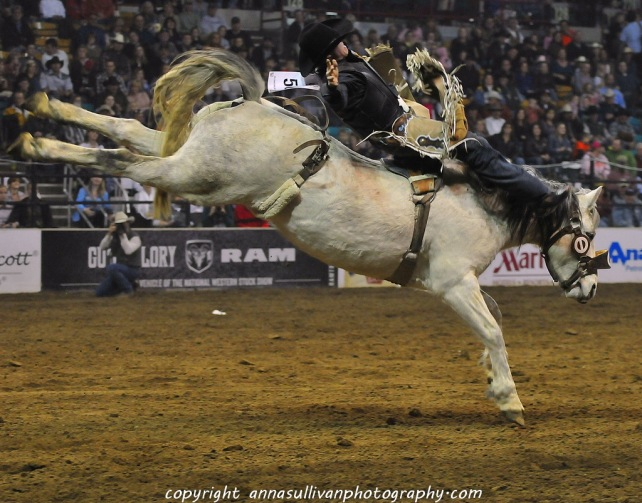 Rodeo_DSC9479