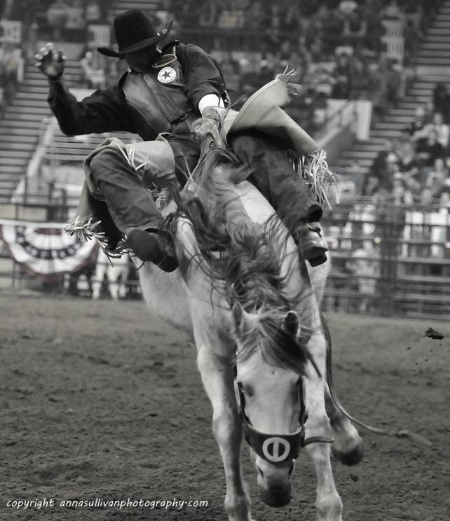 Rodeo_DSC9486