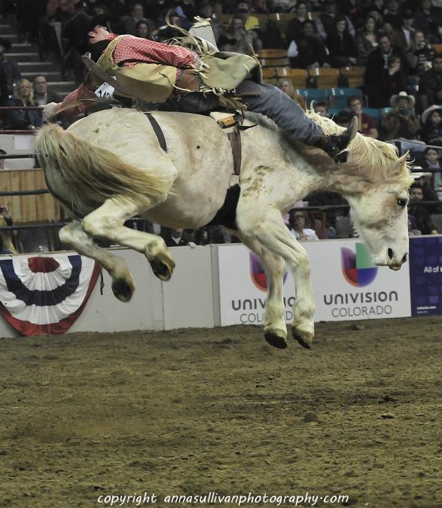 Rodeo_DSC9505