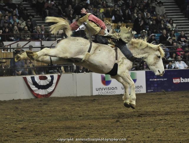 Rodeo_DSC9506