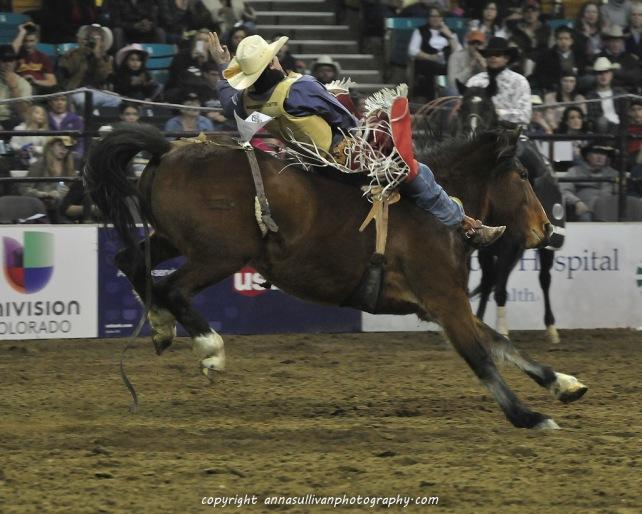 Rodeo_DSC9525