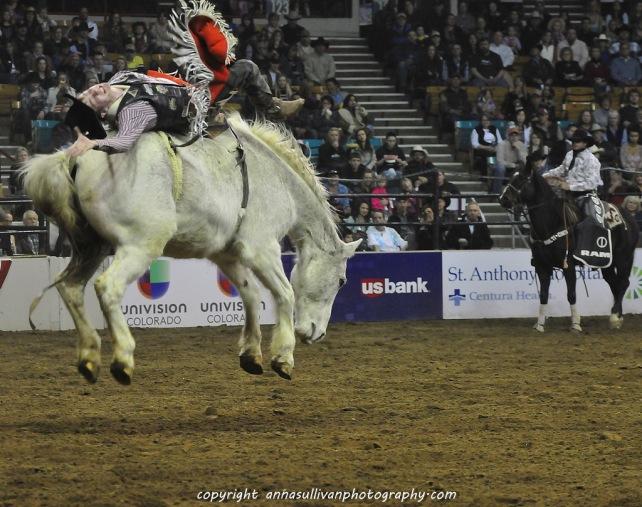 Rodeo_DSC9538