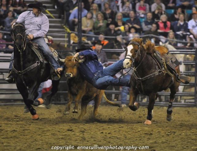 Rodeo_DSC9575