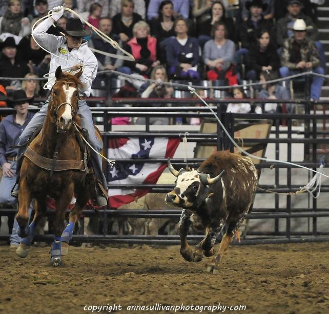 Rodeo_DSC9775