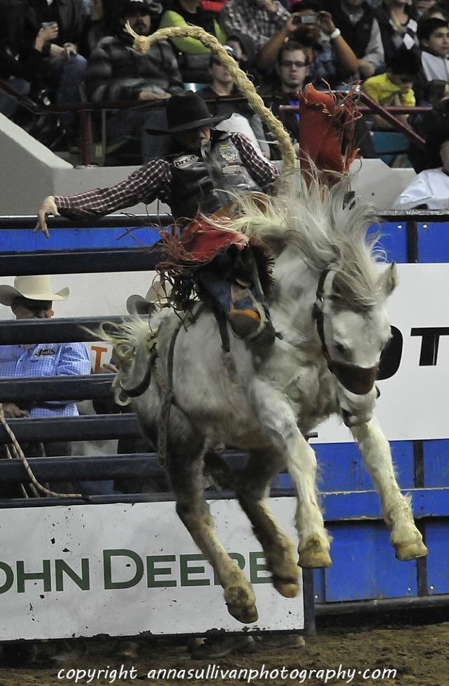 Rodeo_DSC9902