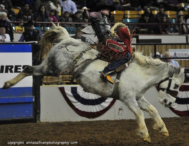 Rodeo_DSC9907