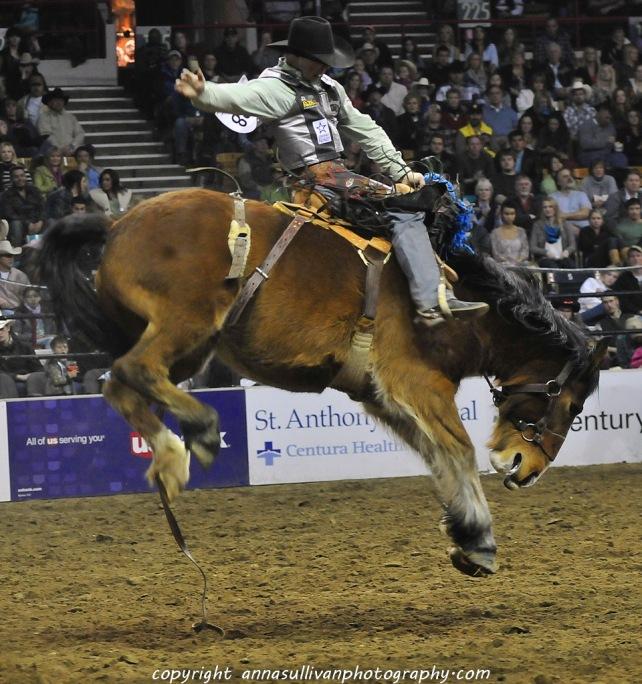 Rodeo_DSC9956