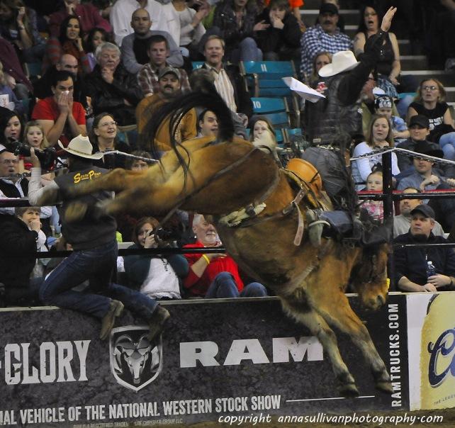 Rodeo_DSC9999