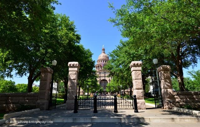 TX Downtown_2386