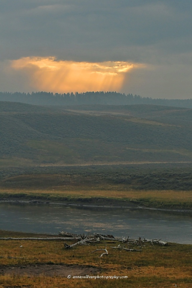 WY Yellowstone_4102