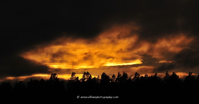 WY Yellowstone_4163
